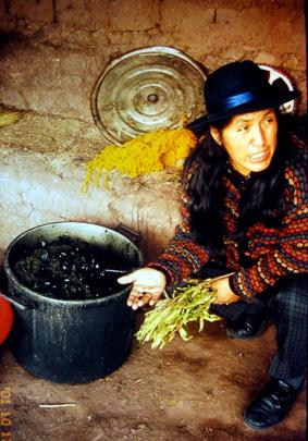 Chinchero, Peru near Cusco.  Nilda Callanaupa explaining dye techniques.